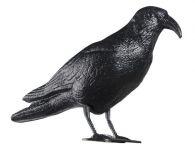 Odpuzovač holubů - maketa havrana 40cm Toro