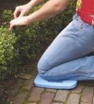 Toro podložka pod kolena modrá 290636