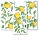 Crearreda Samolepící dekorace - citron 55152