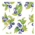 Crearreda Samolepící dekorace -  borůvky 2ks 22x15 cm 56011